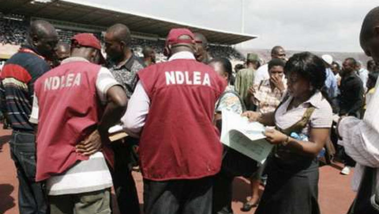 NDLEA arrests 90-year-old with illicit drugs in Katisna