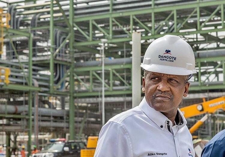 Dangote fertiliser plant ready, products to hit Nigerian market Monday – Official