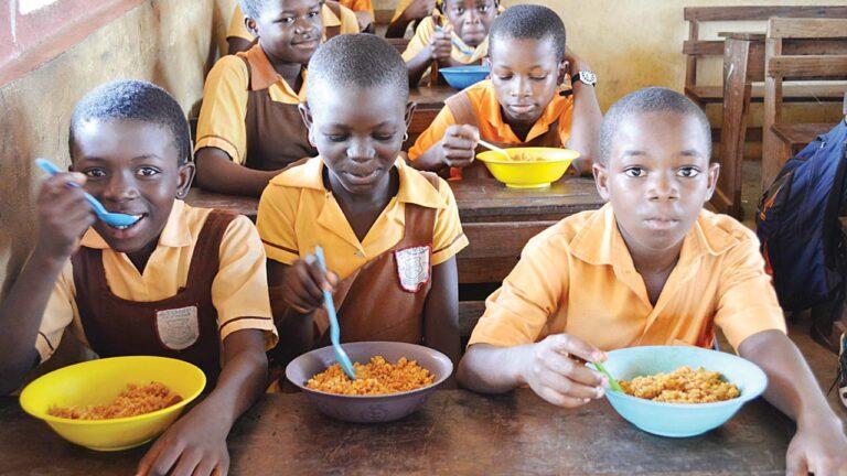 Nigerian govt orders probe of missing N2.67bn for school feeding