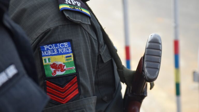 Police arrest house help, 3 others over alleged killing of banker in Yobe